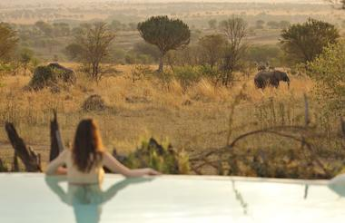 Sayari Camp - guest enjoying the view of the elephants while in the pool